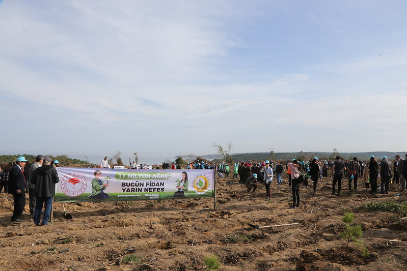 Beykoz'da ağaçlandırma seferberliği