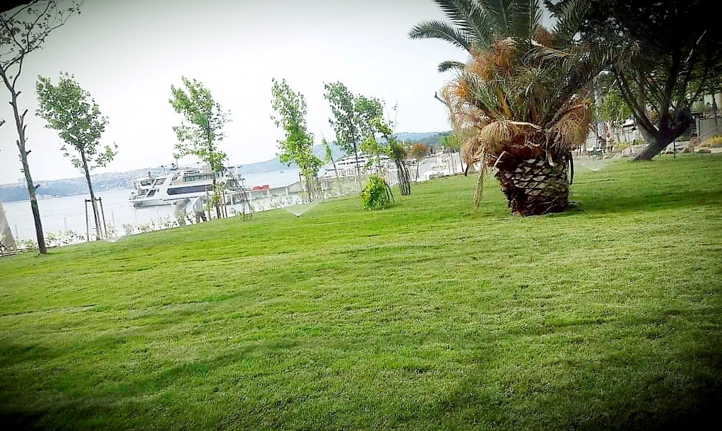 Beykoz sahillerinde adım adım mutlu sona: Yeşil ve ferah!