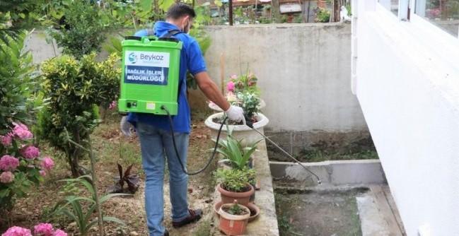 Beykoz'da sivrisineklerle topyekün mücadele!
