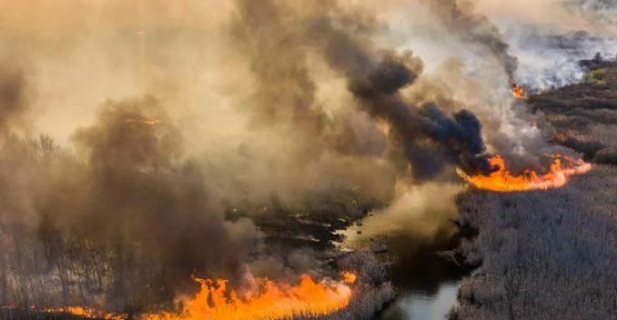 Beykoz'da yangın: Şimdi de Anadolukavağı!