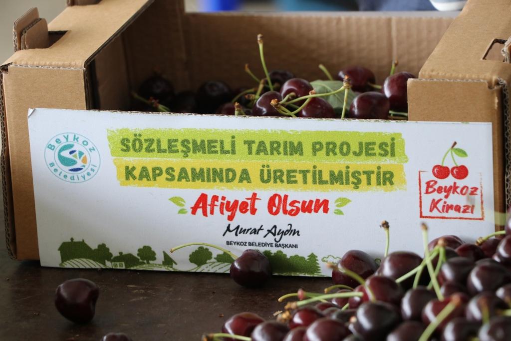 Beykoz'da 21 çiftçiye alım garantisi verildi