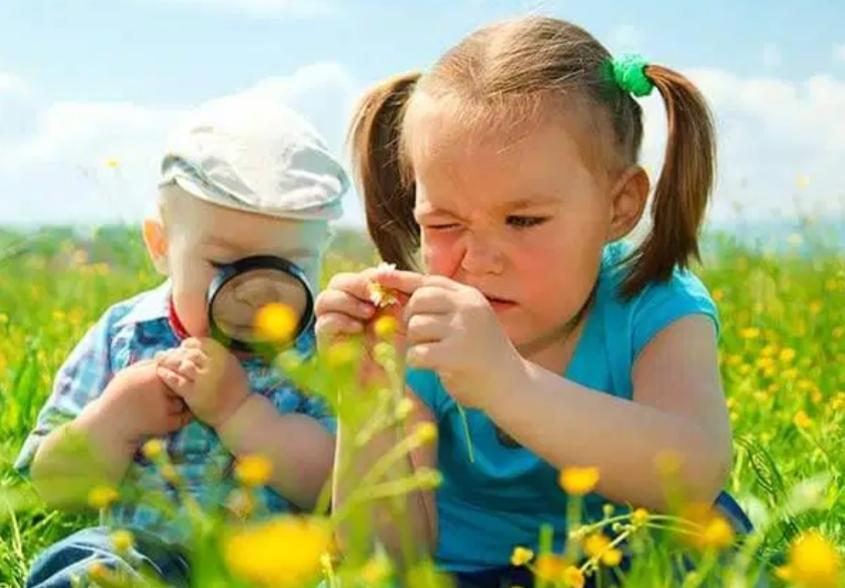 İlköğretim Okullarının doğada stem projesi takdir topladı