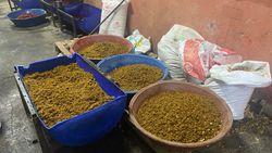 Beykoz'daki ahırdan 5 ton kaçak nargile tütünü çıktı