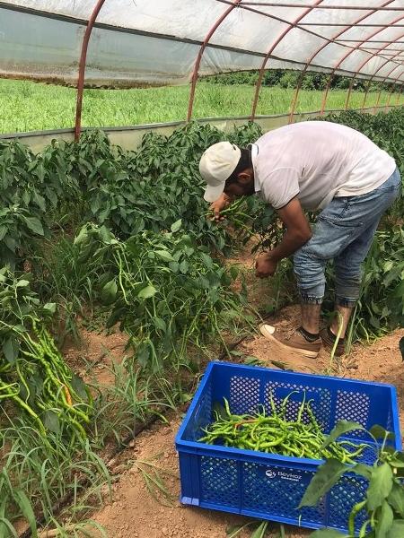 Beykoz Belediyesi 17 çiftçiyle sözleşme imzaladı
