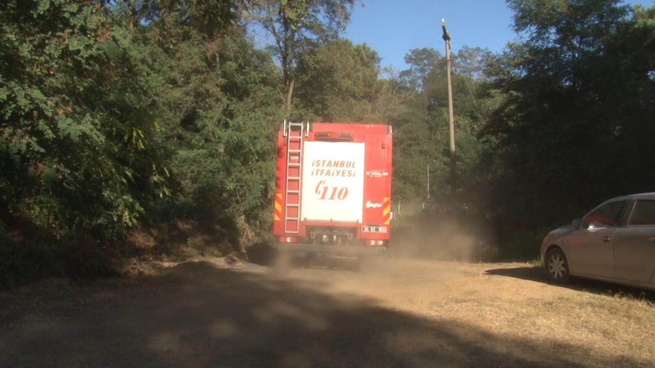 Beykoz Anadolu Kavağı'nda orman yangını!