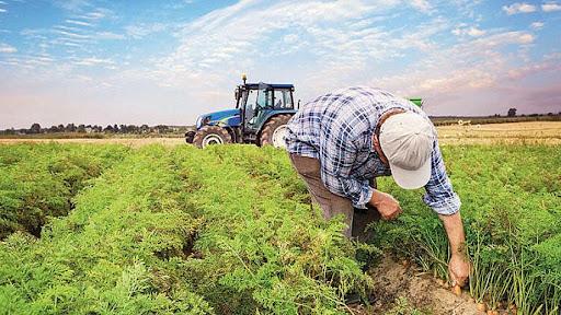 Beykoz'a mevsimlik işçi oldu ve çiftçilik yapıyor